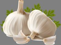 Garlic Flavoured Olive Oils