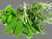Herb Flavoured Olive Oils